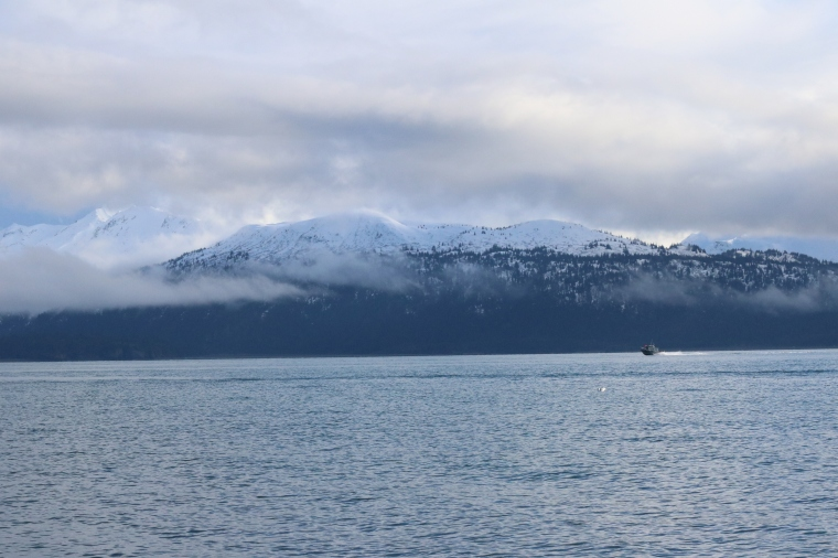 Homer, Alaska. Photo by Kelly Ireland.