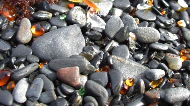 Sea glass on Upper Boyscout Beach. Photo by Ashleigh Roe.